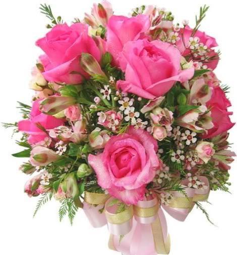 Lule dhe vetëm lule! Jbn14US64PeYyi8sZfXXNapxkz_gj-gw91GoBsZM4XGE3cuv2RZjUg==