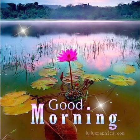 Mirëmëngjesi-Mirëmëngjesi! - Faqe 2 JmtAvLxfmYDUGm8pT3TCkCtmuhk8B335ZCVN2xqX_wdoJouDdTiSrQ==
